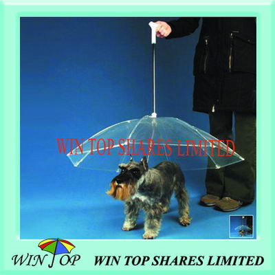Clear PVC, Poe, EVA Pet Umbrella for Dog and Cat