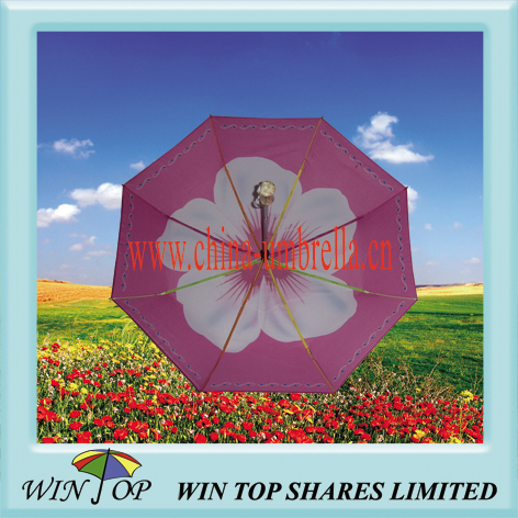 "21"" Colorful Full Auto Open Umbrella with Rainbow Frame"